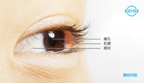 同卵多胞胎识别成功! 人脸识别进入新阶段,ZOLOZ发布眼纹识别技术